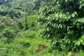 Chủ cần bán gấp mảnh đất 1155m2 full thổ cư tại xã Tú Sơn - Kim Bôi, nơi tiềm năng du lịch