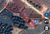 Lô đất 2 mặt tiền trung tâm xã Bình Sơn, Lục Nam, Bắc Giang