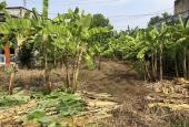 Đất vườn 300m2 trong đó có 150m2 thổ xã Hưng Long SHR giá 2 tỷ 5