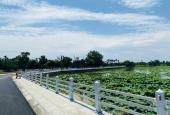 Bán đất view hồ sen duy nhất ở Thạch Thất - Hòa Lạc