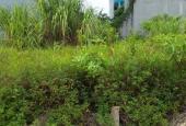 Rẻ nhất khu! Bán đất Bình Minh, Thanh Oai, đấu giá Sinh Quả, 86m2, 29tr/m2, đầu tư tốt