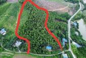 Cần bán 1.3ha đất nghỉ dưỡng view đẹp giá siêu rẻ tại Tp Hòa Bình