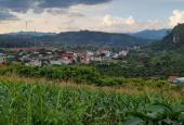 Cần bán lô đất 3500 m2, trung tâm du lịch Mường Sang, Mộc Châu Sơn La