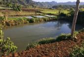 Bán đất Mường Sang Mộc Châu, bán gấp, bán cắt lỗ trả nợ