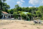 Kẹt tiền ngân hàng bán giá đầu tư đất Phú an Dt 10x22 đường 4m dân cư đông. Lh 0901010989
