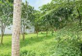 Bán khuôn đất nghỉ dưỡng quá đẹp lại rẻ nhất khu vực Thủy Xuân Tiên Chương Mỹ Hà Nội