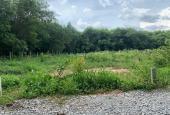 Bán đất mặt tiền An Điền 080 Bến Cát gần trường tiểu học đường 5m thông 10x37m TC 100m2, 1.9 tỷ