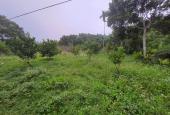 Cần bán nhanh 1975m2 đất full thổ cư giá siêu rẻ tại Kim Bôi, Hòa Bình