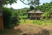 Bán gấp 4194m2 có 400m2 TC tại Cao Phong - Hòa Bình thích hợp làm homestay, nghỉ dưỡng, đầu tư