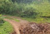 Bán 3ha đất trang trại giá rẻ chỉ 80 nghìn/m2 tại Cao Phong Hòa Bình