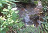 Hàng hiếm giá rẻ chỉ hơn 500tr - 1580m2 thổ cư suối thác trong đất - view cánh đồng