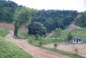 Cơ hội cho NĐT sở hữu ngay 7.000m2 đất nghỉ dưỡng cực đẹp duy nhất tại Phường Kỳ Sơn, Tp Hòa Bình