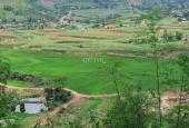 Chính chủ bán 5100m2 đất rừng sản xuất Bắc Phong, Cao Phong Hoà Bình, chỉ 550tr bao sổ. 0962830896