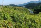 Bán gấp gần 1ha đất thích hợp làm trang trại, nghỉ dưỡng có hồ nước chảy quanh đất