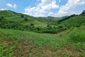 Lô đất 3000m2 đất RSX tại Cao Phong Hòa Bình bám trục liên xã giá cho các nhà đầu tư