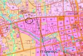Bán thổ cư Cam Đức mặt đường đường Đinh Tiên Hoàng QH40m diện tích 382.4m2