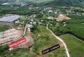 2005m2 Khánh Phú đường bê tông cách Ngã 3 HL62 và đường Yangbay 200m chỉ 499 triệu
