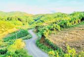 Bán đất Cao Phong, Hòa Bình view đẹp giá siêu rẻ cho mùa dịch