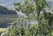 Gần 1000m2 có 300m2 thổ cư ngay vùng lõi du lịch lòng hồ, chỉ vài trăm triệu
