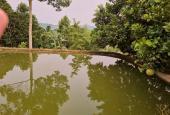 Bán nhanh 1850m2 thổ cư đất tại Cao Phong - Hòa Bình giá chỉ hơn năm trăm triệu