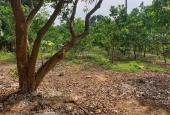 Đất đẹp 1148m2 tại Đồng Trúc, gần khu cnc Hòa Lạc, sát dự của Vingroup, giá hơn 5tr/m2
