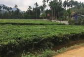 Bán 1118m2 đất nghỉ dưỡng tại Yên Bình Thạch Thất, bao sổ hồng, view núi đồi, giá nhỉnh 3 tỷ