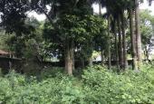 Bán nhanh lô đất 520m2 thôn Nhân Lý - Đông Ninh - Khoái Châu - Hưng Yên cực kì đẹp chỉ 18tr/m2