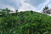 Bán đất tại xã Hợp Phong, Cao Phong, Hòa Bình diện tích 4300m2 giá 370 triệu