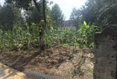 Bán đất tại đường 1, Xã Phúc Tiến, Phú Xuyên, Hà Nội diện tích 100m2 giá 4 triệu/m2