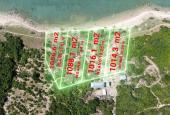 Bán đất mặt biển tại Điệp Sơn khu kinh tế Bắc Vân Phong Khánh Hòa. Giá chỉ 4.99 triệu/m2