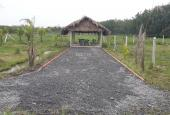 Bán đất An Nhơn Tây, Củ Chi tặng nhà vườn kèm ao cá chỉ 870tr có SHR công chứng ngay