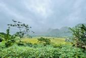 Cần bán đất Tú Sơn - Kim Bôi 3500m2 giá rẻ view cực phẩm ruộng bậc thang thơ mộng