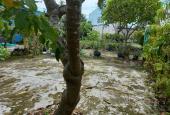 Bán đất 4 mặt tiền, khu sinh thái Cù Lao phường Hiệp Hòa, sát cầu An Hảo, 793m2 giá tốt chỉ 13 tỷ.