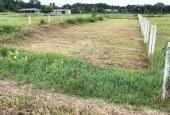 Kẹt tiền bán gấp 250m2 đất, giá 700tr, sổ sẳn, đường 1 sẹc TL7 Củ Chi