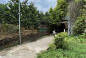 Bán 52m2 đất giãn dân, xây nhà ở, tại xã An Thượng, Hoài Đức, Hà Nội