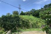 Lô đất 4.5ha full vườn cam tươi tốt tại Tân Lạc. Giá hợp lí cho mùa dịch
