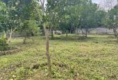 Bán 1.750m2 đất thổ cư đẹp giá đầu tư tại Lương Sơn, Hòa Bình.