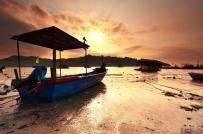 Malaysia: Bùng nổ các dự án xây dựng - Nỗi lo cho môi trường