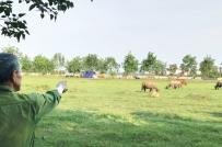 La liệt đô thị bỏ hoang tại Hà Nội