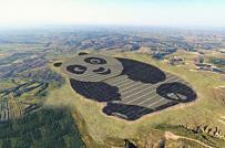 Độc đáo nhà máy điện Mặt Trời hình gấu trúc ở Trung Quốc