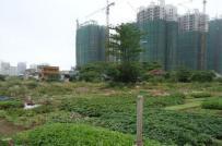 Điều chỉnh hệ số giá đất tại 1 loạt các dự án trọng điểm trên địa bàn Tp.HCM