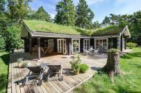 Ngẩn ngơ ngắm ngôi nhà gỗ đẹp như cổ tích giữa rừng xanh
