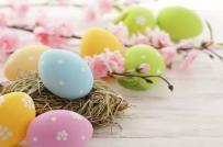 Vỏ trứng sắc màu cho góc nhà đẹp mê ly