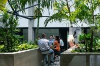 Cải tạo nhà máy in cũ thành co-working space đậm chất rừng xanh