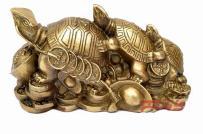 Ý nghĩa rùa phong thủy và cách bố trí mang lại tài vận cho cả gia đình