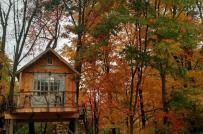 Những ngôi nhà trên cây mát lịm, đẹp như cổ tích
