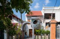 Ngắm ngôi nhà tổ chim của ba mẹ con ở Hà Nội