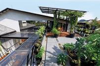 Ngắm ngôi nhà xanh mướt giữa lòng thành phố ở Indonesia