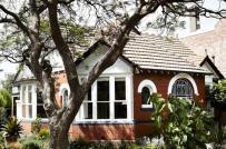 Ngôi nhà cấp 4 bình yên dưới tán cây cổ thụ