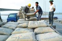 Tổng giá trị xuất khẩu xi măng, clinker sang 3 thị trường chính đạt 471 triệu USD